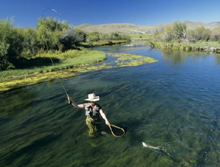 Destination five rivers lodge montana us for Beaverhead river fly fishing